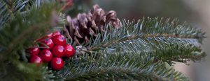 Closeup of wreath with cones and berries - 1420x556